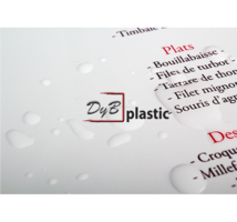 Menu Plastificado